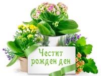 Честит рожден ден с букети цветя